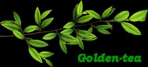 Golden-чай